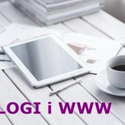 teksty na www i blogi